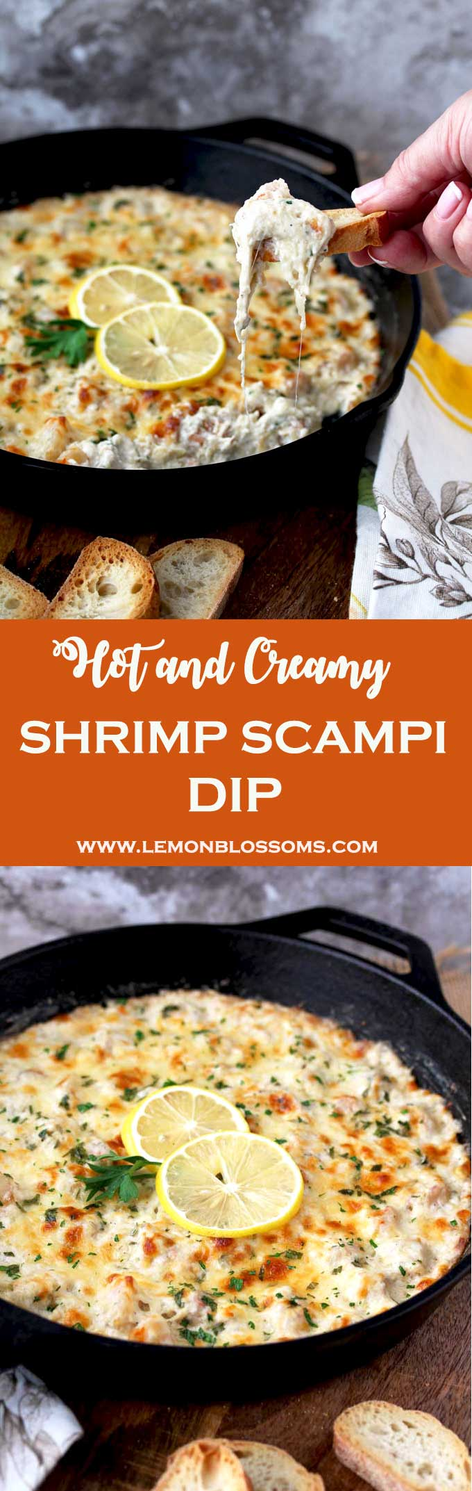 This Shrimp Scampi Dip is rich, creamy, cheesy and so tasty. This bubbly hot dip is easy to make and definitely  a crowd pleaser! Succulent shrimp, garlic, lemon zest, cream cheese, Mozzarella and Parmesan make this dip a party favorite! #appetizer #shrimp #dip