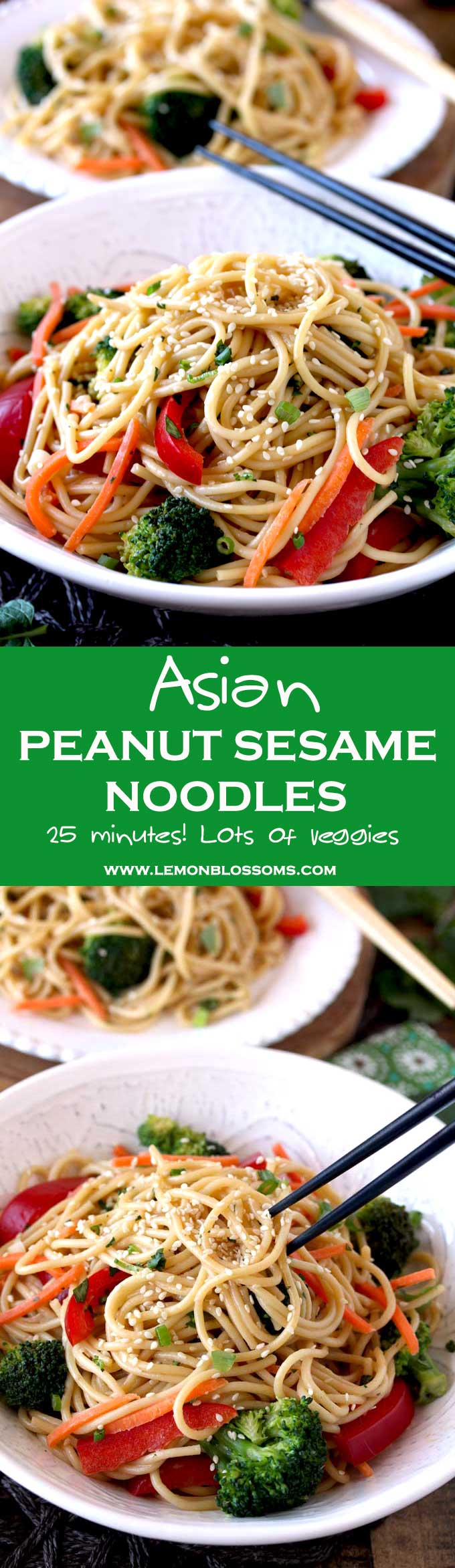 These quick and easy Asian Peanut Sesame Noodles are made in 25 minutes! Noodles, veggies and fresh herbs are tossed in the most delicious and creamy peanut sesame dressing. Perfect served hot, at room temperature or cold. Definitely a meal you will make over and over again! #Asian #Noodles #Sesame #easy #quick
