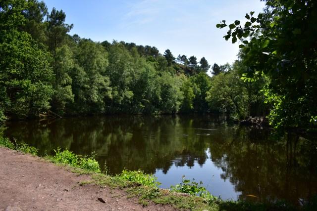 Visiter la forêt de Brocéliande- Tréhorenteuc