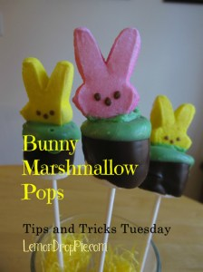 http://www.lemondroppie.com/2013/03/bunny-marshmallow-pops-recipe/