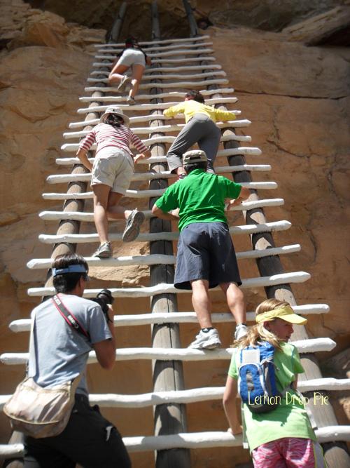 Mesa Verde ladder