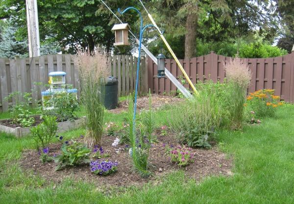 Pollinator garden, summer of 2015