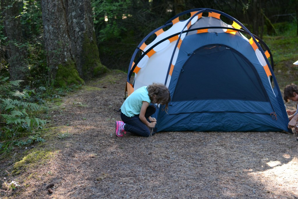 Lily staking tent