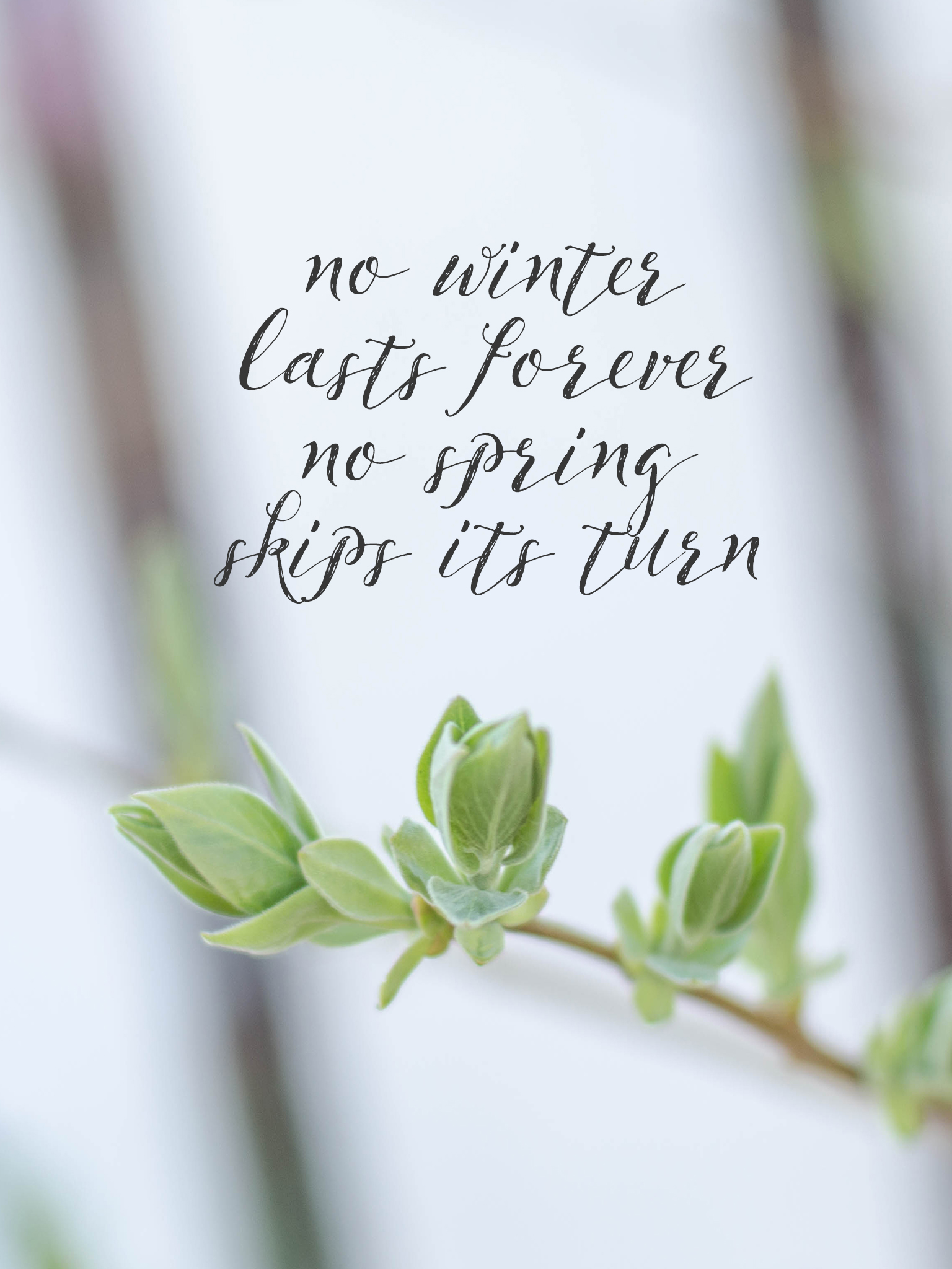 Quotes Wallpaper For Iphone 6 No Winter Lasts Forever Spring Wallpapers Are Here