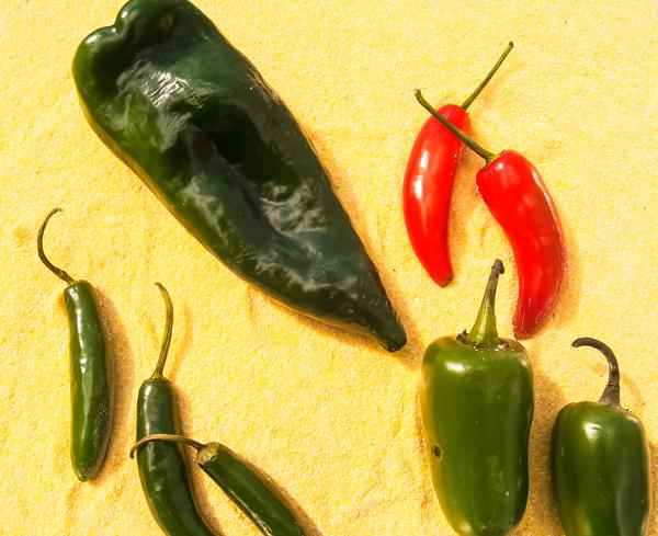 Push It: A cookbook review, Tacos by Alex Stupak and Jordana Rothman