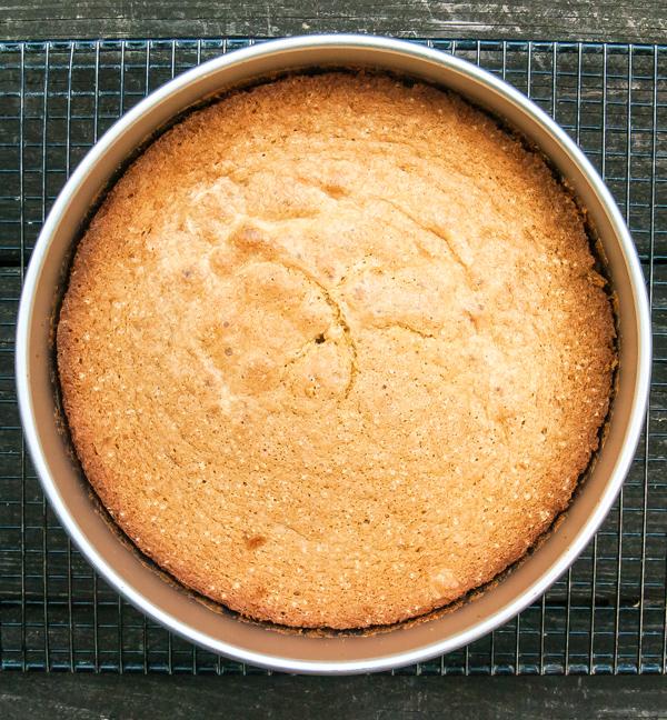 Gluten Free Nifty Cake made with gluten free sponge cake recipe