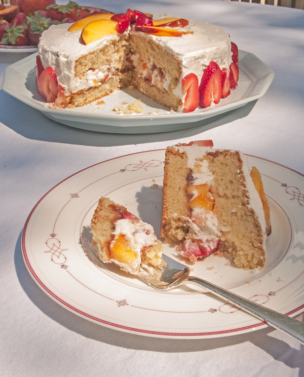 Gluten Free Nifty Cake made with a gluten free sponge cake recipe