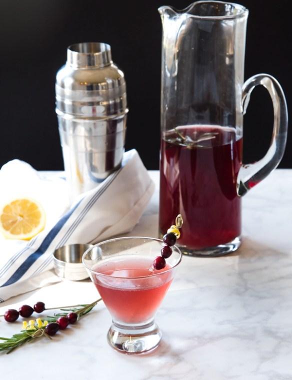Spiced Cranberry Vodka Cocktail Recipe
