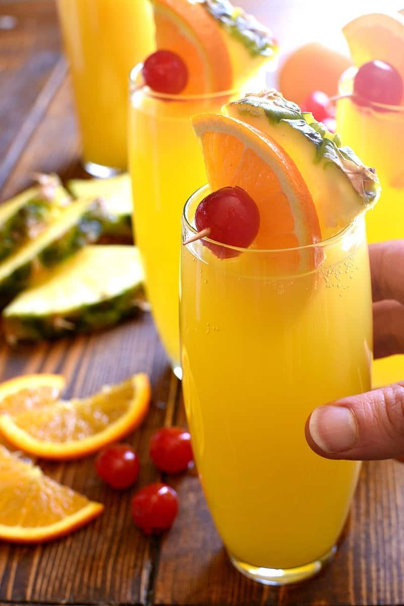 Tropical Mimosas  Lemon Tree Dwelling