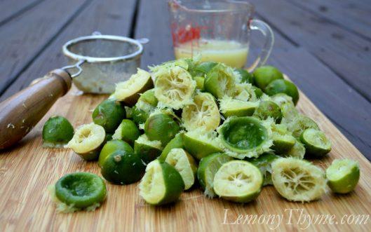 Key Lime Bars with Macadamia Crust