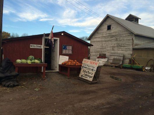 Self Serve Farm Stand