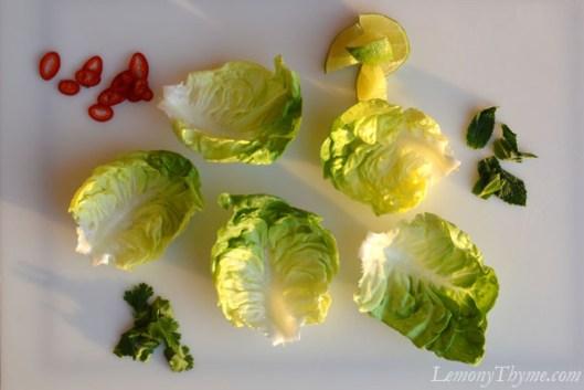 Thai Larb Salad lettuce cups