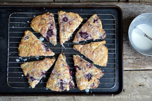 Lemony Thyme & Blackberry Scones7