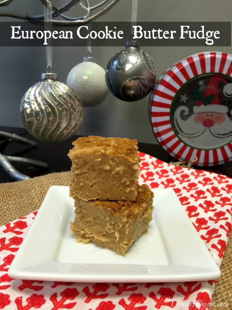 European Cookie Butter Fudge | LemonyThyme.com | #biscoff #fudgerecipe