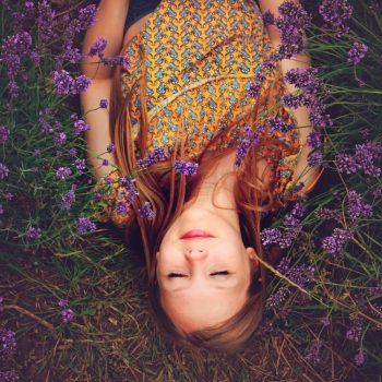 Lavendel_1000_2