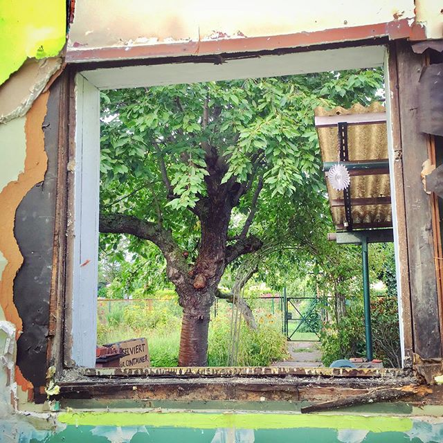 Old windows carefully removed to be reinstalled in the new walls