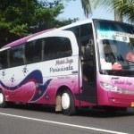 Bus Pariwisata Medal Jaya
