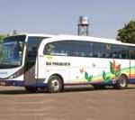 Bus Wisata Surya Putra
