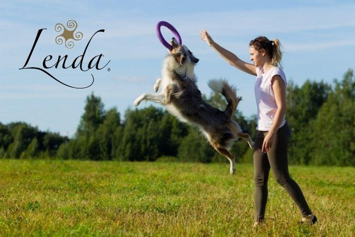 6 ideas para practicar deporte con tu perro