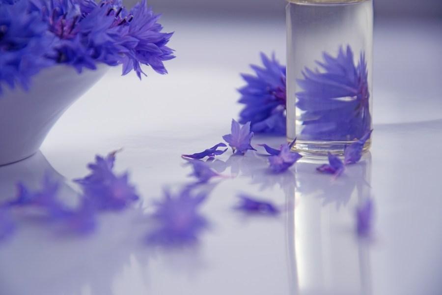 lavender fragrance