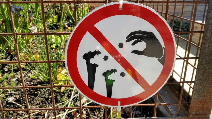 Do not feed the plants. Or they will rise up and eat the visitors.