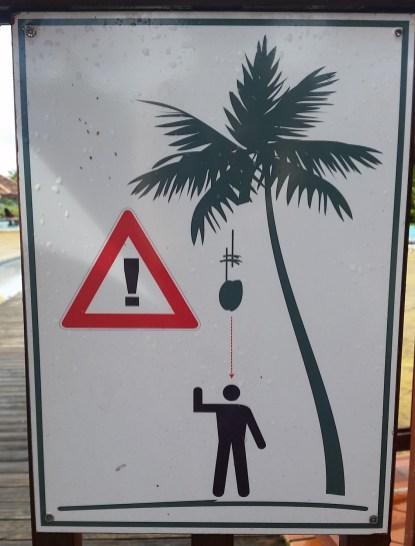 Beware of the coconuts