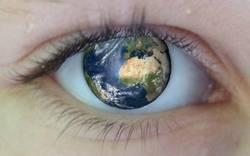 Le Dossier du mois mai 2014 - Etre vu sur Internet, Référencement naturel Liens sponsorisés