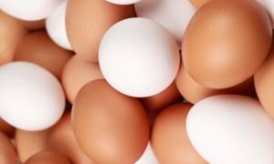 Tesco do roku 2025 zastaví predaj vajec z klietkového chovu