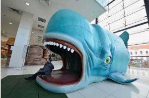 Pinociova veľryba v Poluse