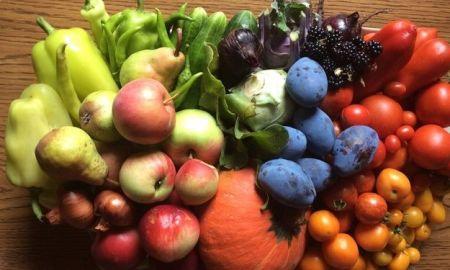 Jesenná záhrada je na plody štedrá, je preto škoda to nevyužiť a nespracovať ich na horšie časy. Sušenie ovocia nie je žiadna veda, stačí sa držať osvedčených postupov a trikov.