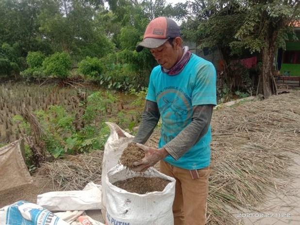 LensaHukum.co.id - IMG 20210228 WA0004 - Akibat di Terjang Banjir Ratusan Hektar Lahan Pertanian Di kabupaten Bekasi Hancur Gagal Panen