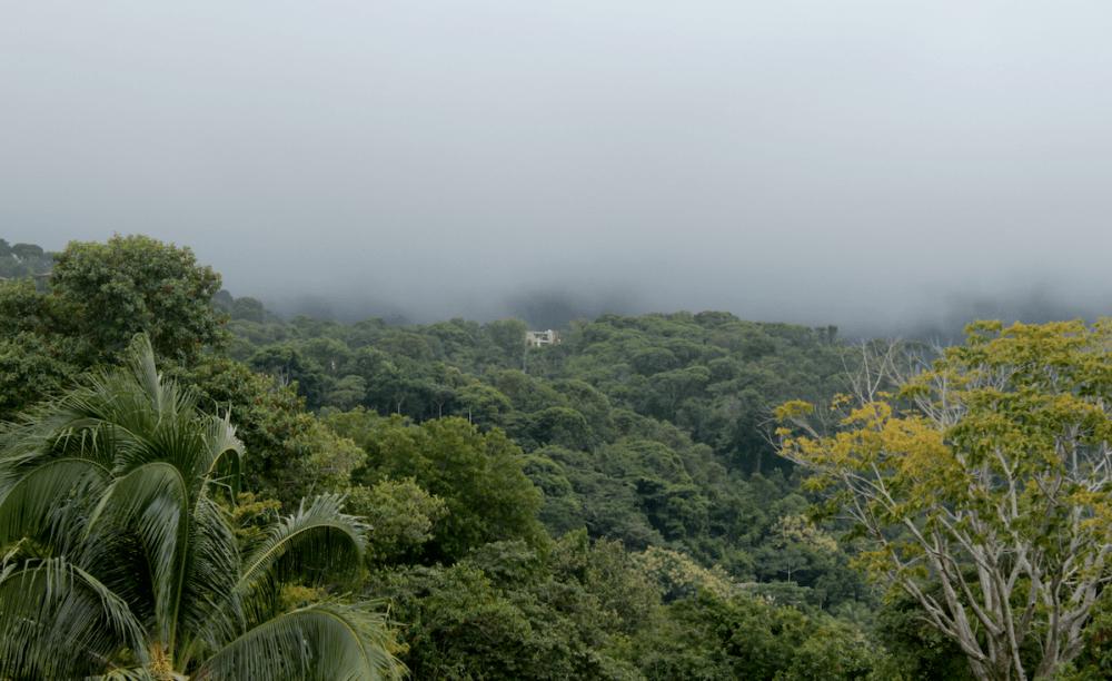 Regenwolken über Regenwald in Costa Rica