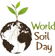 lentepubblicait  World Soil Day 2014 mai pi consumo di