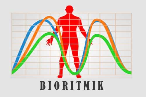 Pendekatan Teori Bioritmik