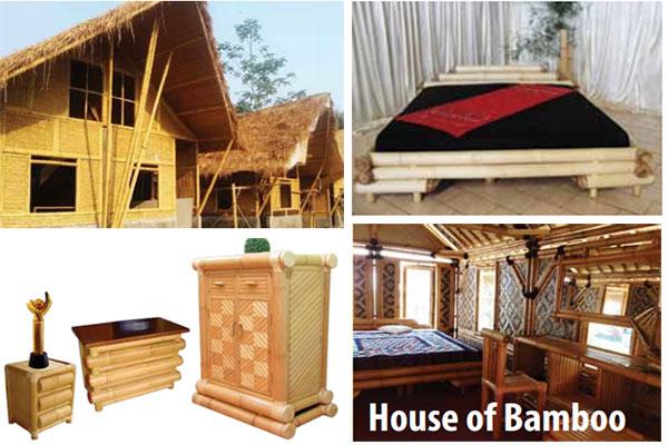 Furnitur Bambu Shaniqua Bamboo