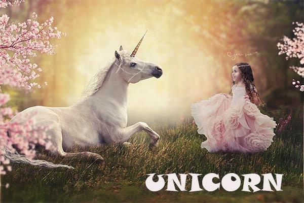 Pengertian Unicorn Dalam Startup