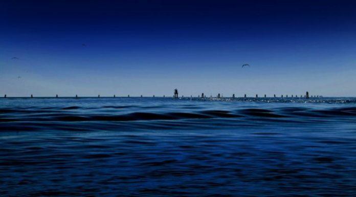 laguna-col---363--5-800x442