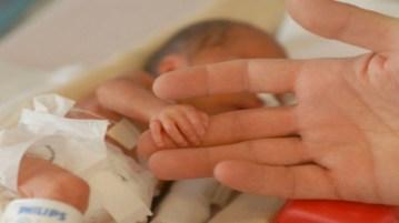 utero artificiale
