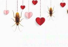 regalo di san valentino al vostro ex