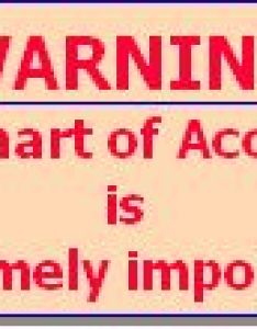 Warning chart of accounts is extremely important also learning accounting what  rh leoisaac