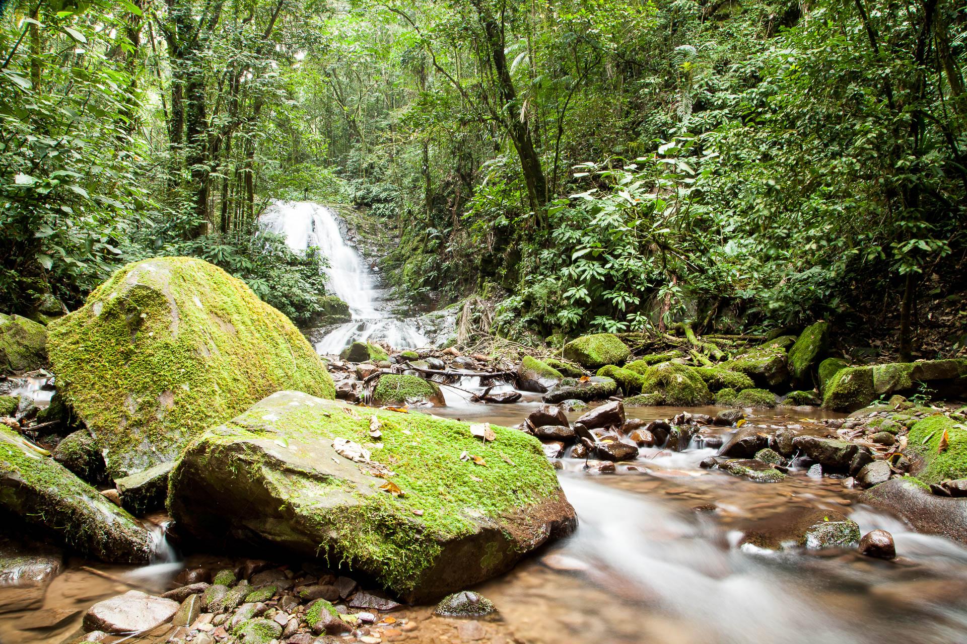 Riacho no Parque Ecológico Spitzkopf, em Blumenau - Santa Catarina - Brasil