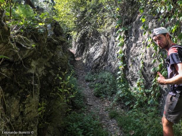 Il sentiero scavato nella roccia a Cislano