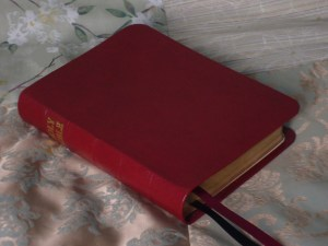 Red River Grain Goatskin Bible