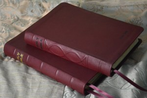 Deep Red Soft-Tanned Goatskin two ways -- with antiquing and artistic spine ribs