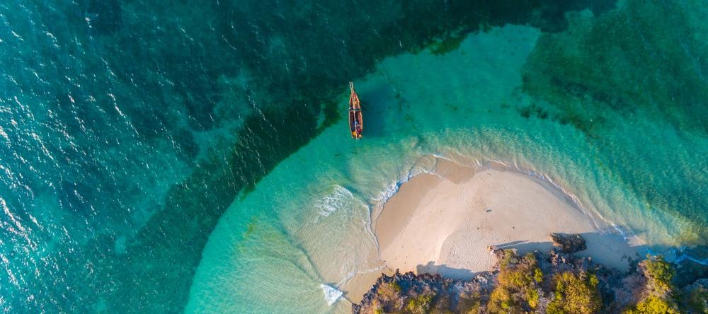 Zanzibar, Léopard voyage