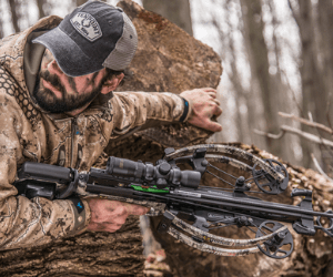 best budget crossbows for hunting