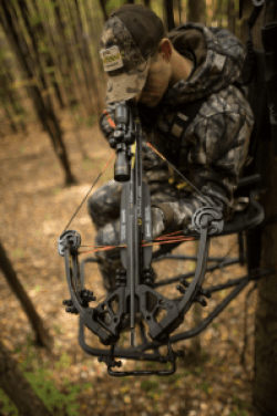 best crossbows for deer hunting reviews