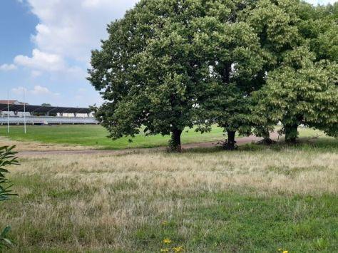 Bagnolet, ce vendredi. Le parc des sports de la Briqueterie est un des espaces verts de la commune.