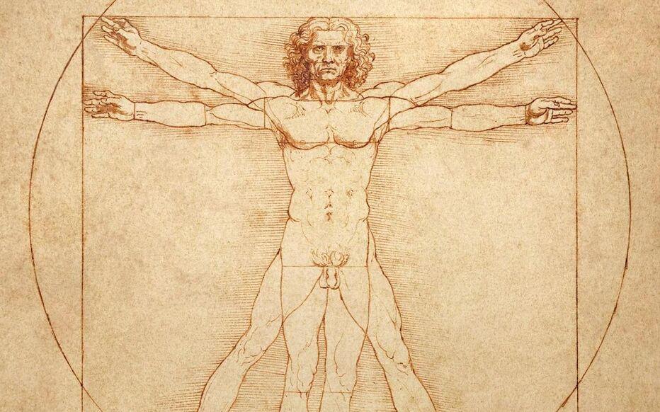 « L'Homme de Vitruve », l'une des icônes de Léonard de Vinci, a failli ne pas être prêtée pour l'exposition au Louvre.