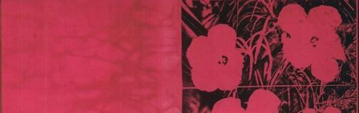 cropped-Andy-Warhol-Flowers-1965-silkscreen-ink-on-fabric.jpg